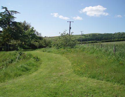 Bh path