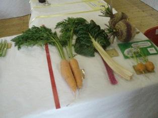 V s carrots