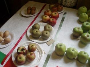 V s apples