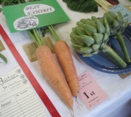 Vs 2 carrots
