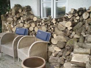Logs 3