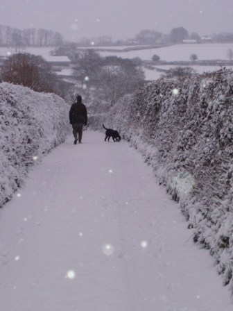 Snowpics 2