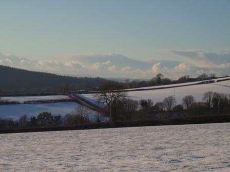 Snowpics thurs 1