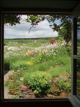 Garden 06-10 door