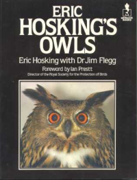 Eh's owls