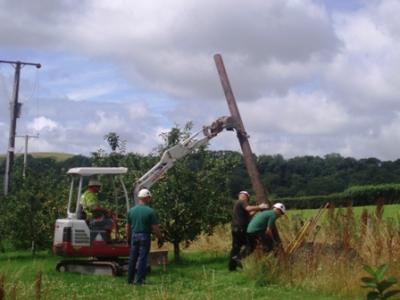 Installing a pole box for barn owls