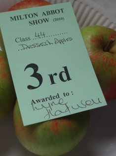 V show 2010 apples dgr