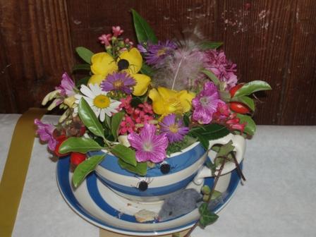 V show 2010 teacup
