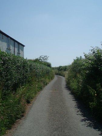Esc hedge 3