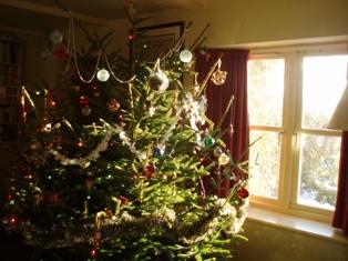 Xmas 10 tree
