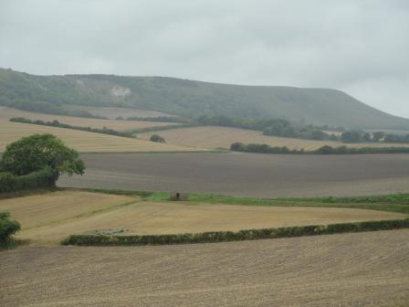 View from Berwick Church