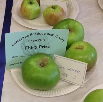 Lvs apples