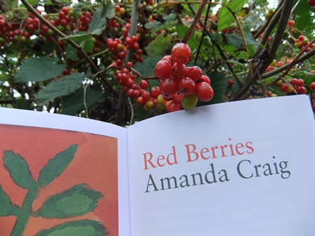 Wt red berries