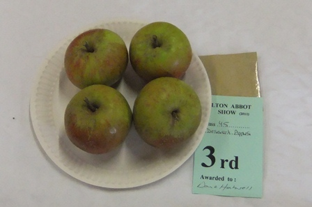 Village show 11 apples 3rd