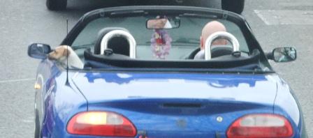 Scott car