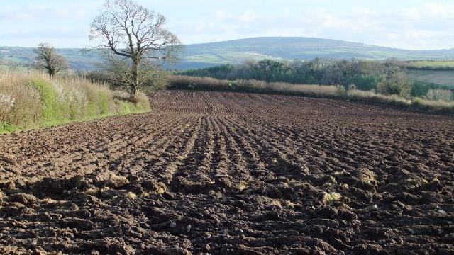 Er field