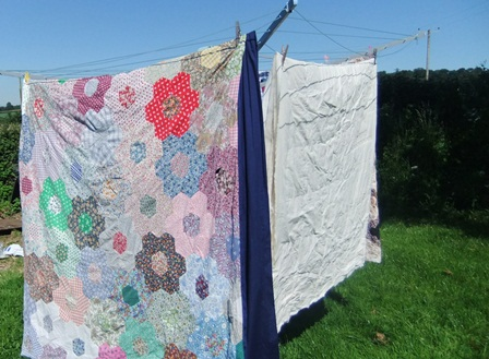 Pe12 quilts on line