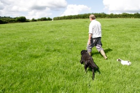 Man and dogs set off towards the 'pool'