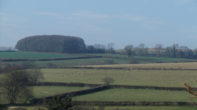 Devon Feb 29th 2012