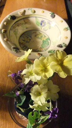 Primroses where they are not supposed to be...