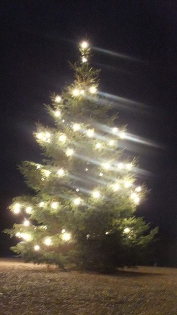 Kh tree lights