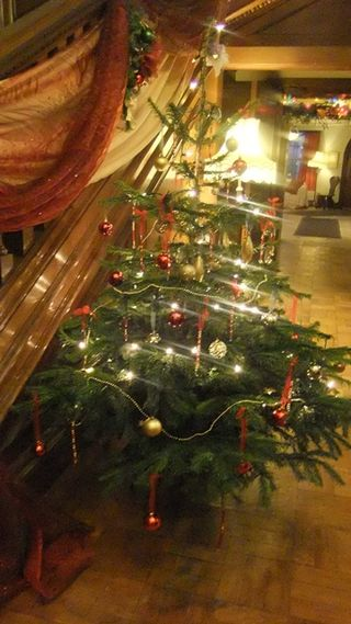 Killerton Christmas