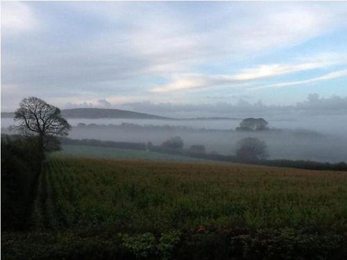 October morning in the Tamar Valley