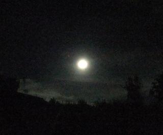 Tamar Valley Hunter's Moon Oct 29th 2012