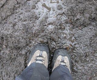 More mud...