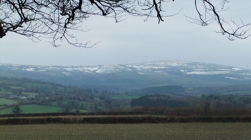 Kit Hill from The Beechwood, January 2013