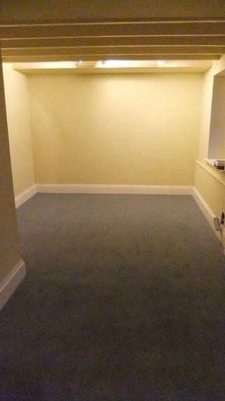 T cott carpet 1