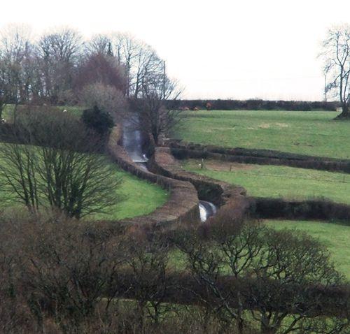 Hedges February 2013