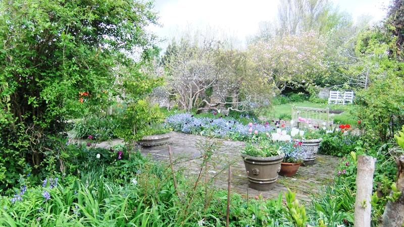Vw house garden 3