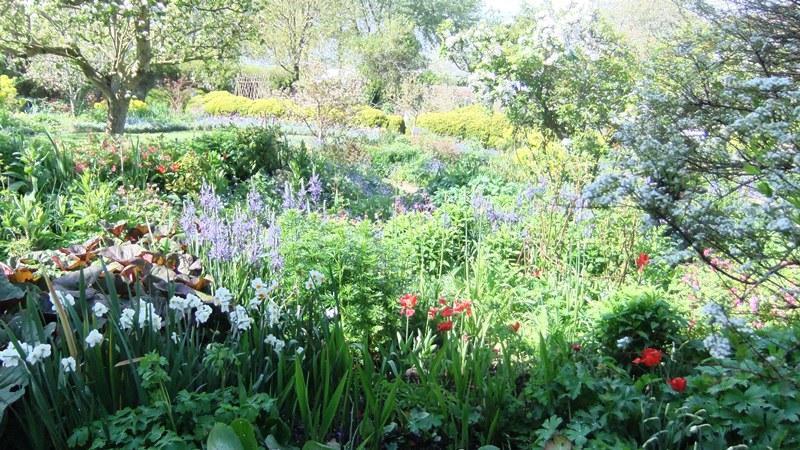 Ch garden 1
