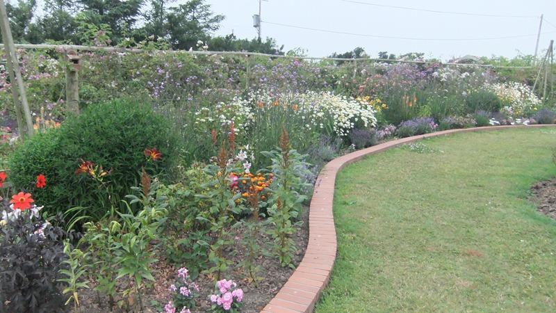 Cheristow Lavender Farm