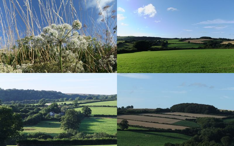 The Shire in August