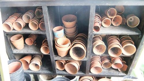 Garden may 13 pots