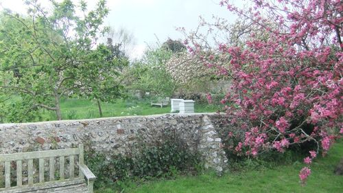 Monks House, the orchard