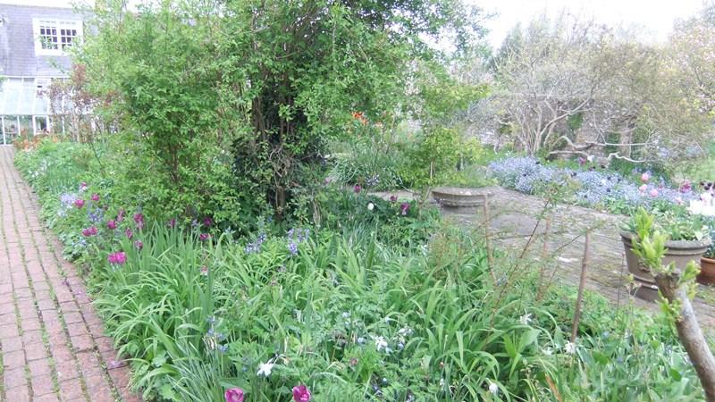 Vw house garden3