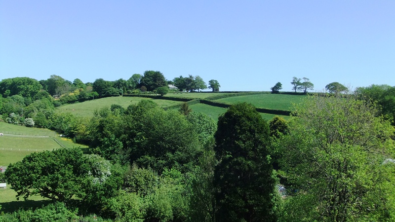 The Belfry view