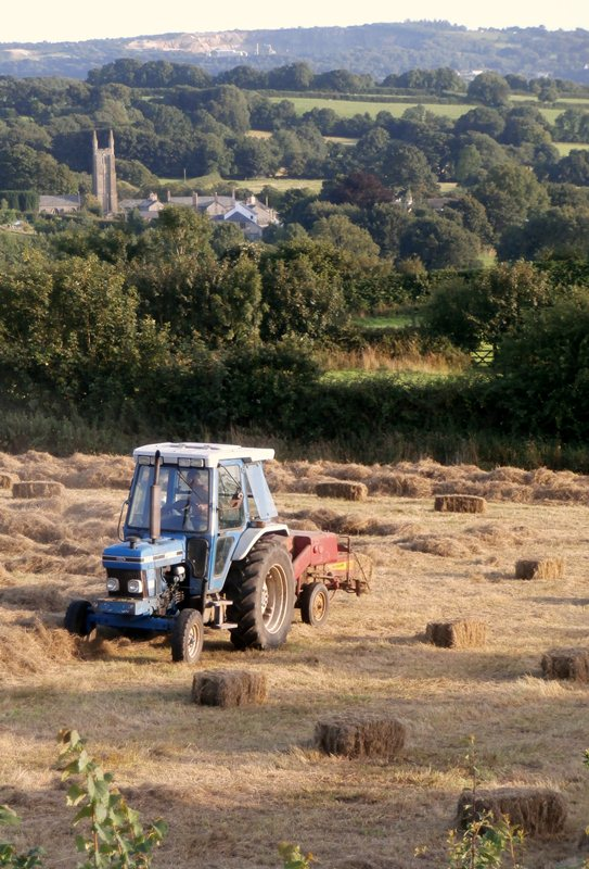 AUGUST HAYMAKING