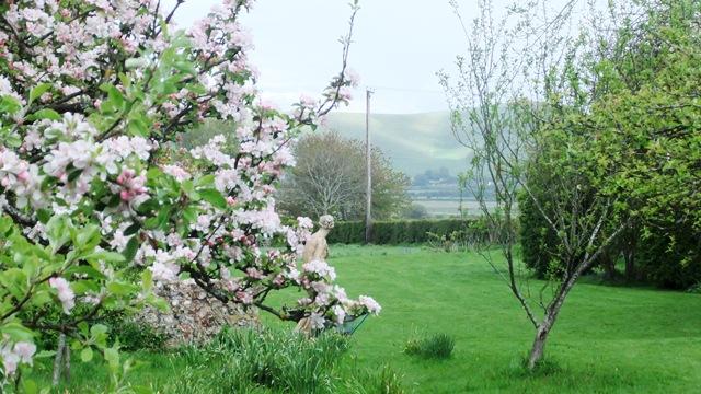 Vw house garden view