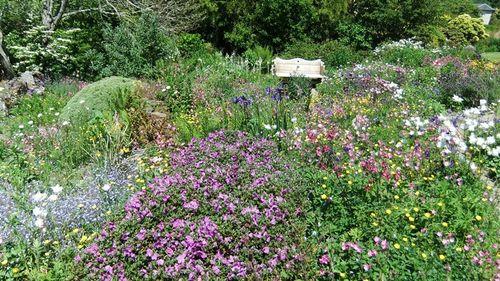 The Garden House, Buckland Monachorum