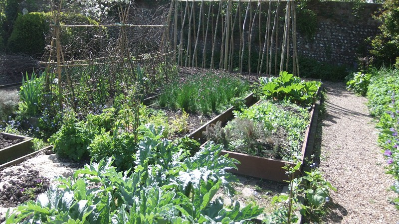 Ch garden veg