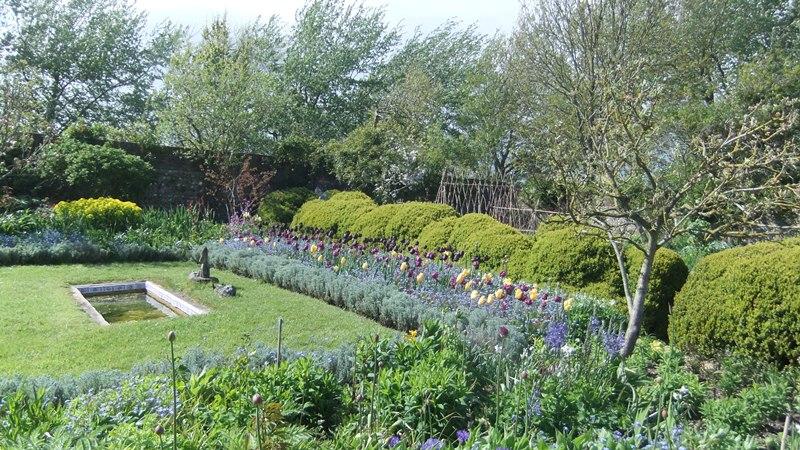 Ch garden 5