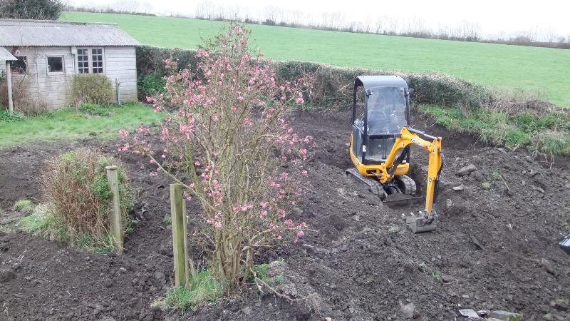 Tinker's Cott garden 2012