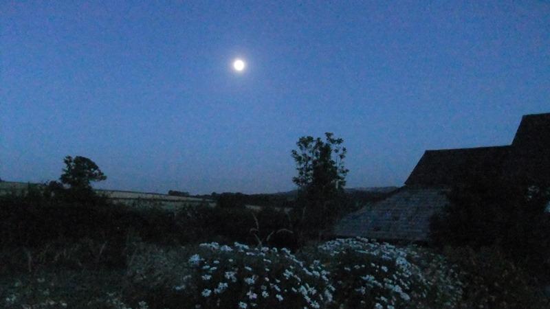 July moon3