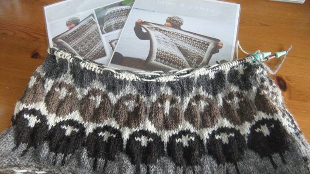 d54c37f910f Knitting up a flock of Rams   Yowes... - dovegreyreader scribbles
