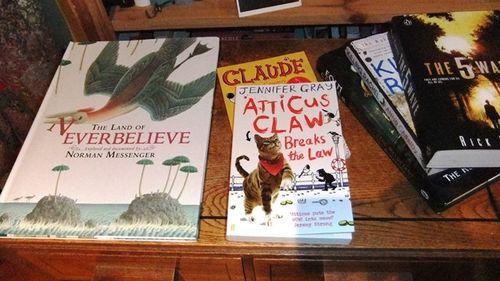 Dovegreyreader Scribbles Childrens Literature
