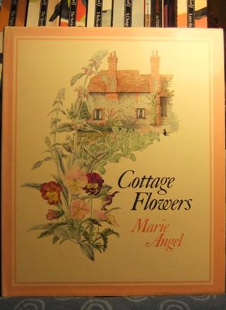 Cottage Flowers ~ Marie Angel